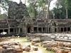 Vign_cambodge_051