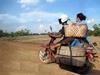Vign_cambodge_163